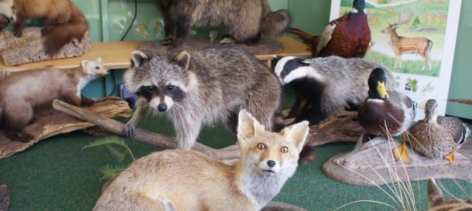 Lernort Natur besucht das Familiencafé am 21. Juni ab 15 Uhr